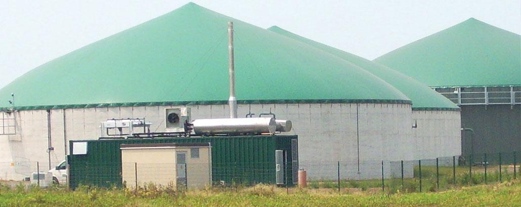Dezentrale Energieerzeugung durch Biomasse: Investitionsberatung durch erfahrene Praktiker